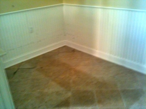 Flood damaged mudroom: walls and floors