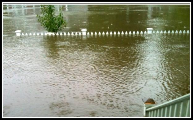 floodsavvy.com