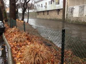 Flood Savvy