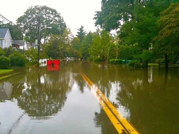 flood savvy.com